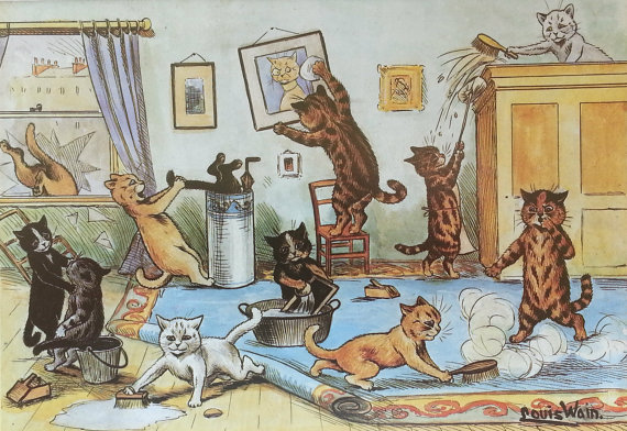 cats cleaning, color