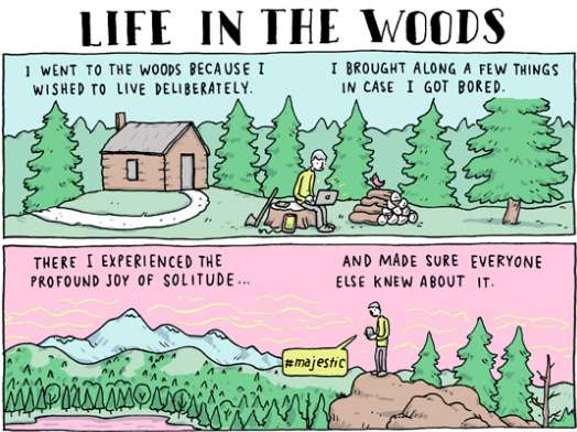 life-in-the-woods