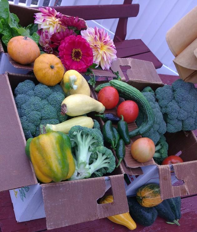 produce-fall