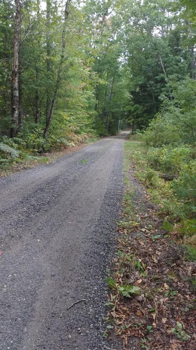 cabin-lane