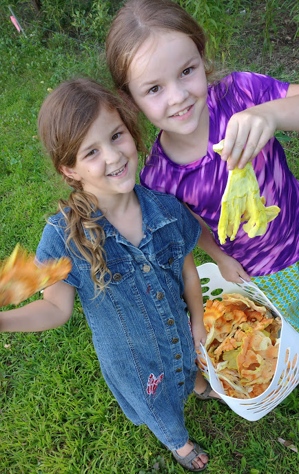Chicken of the Woods Foragers
